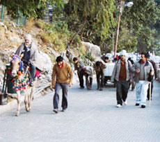 Maa Vaishno Devi Package (By Road)